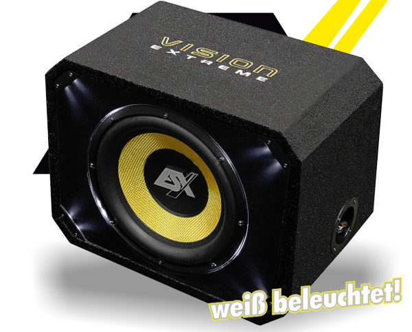 ESX Bassbox Subwoofer Bassreflex VE300