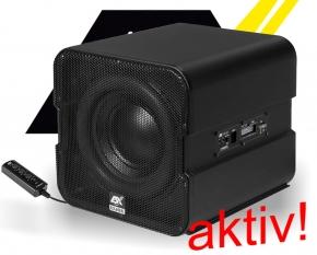 ESX Vision Aktiv Subwoofer Bass V1600A 20cm 300W