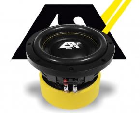 ESX Subwoofer Bass Lautsprecher Quantum QE622