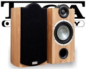 Taga Lautsprecher Regallautsprecher Platinum v.3 B-40 oak