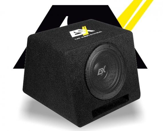 ESX Auto Subwoofer Bassbox DBX108Q 20cm 400W