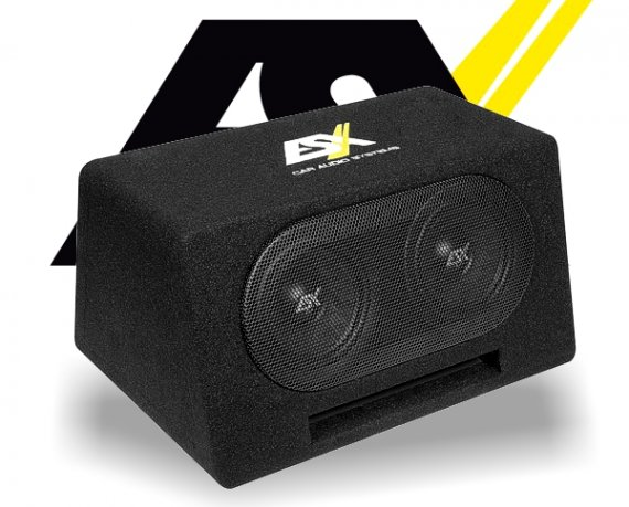 ESX Auto Subwoofer Bassbox DBX206Q 2x 165mm 600W