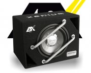 ESX Signum Bassreflex Subwooferbox XE-250